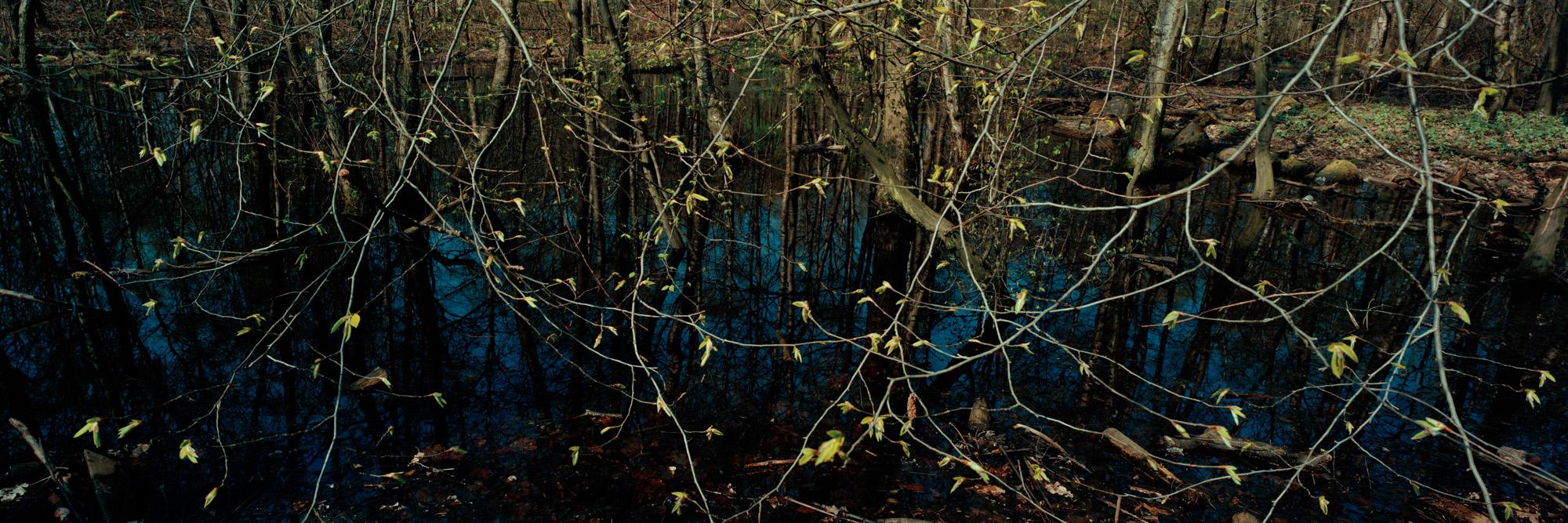 Wasser, water, Eis, ice, Landschaft, landscape, Weitblick, view, large format photography, Grossformatfotografie, Grossformatphotographie, Fotografie, Photographie, photography, white, weiss, blue, blau, green, grün, 6x17